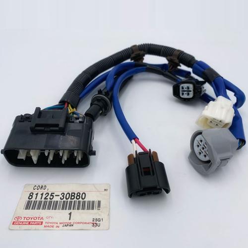 Lexus GS300 / GRS190 Headlamp wire